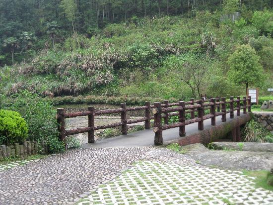 Photos of Baishuiyang Scenic Resort
