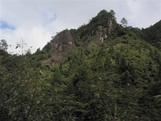 Photos of Ningde Yuanyang Stream