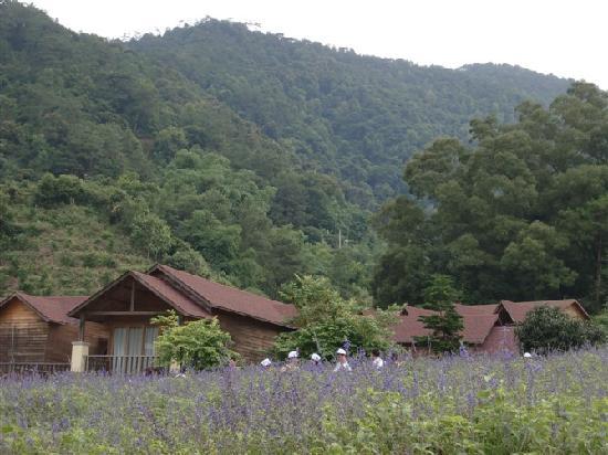 Photos of Panlong Gorge Ecological Resort