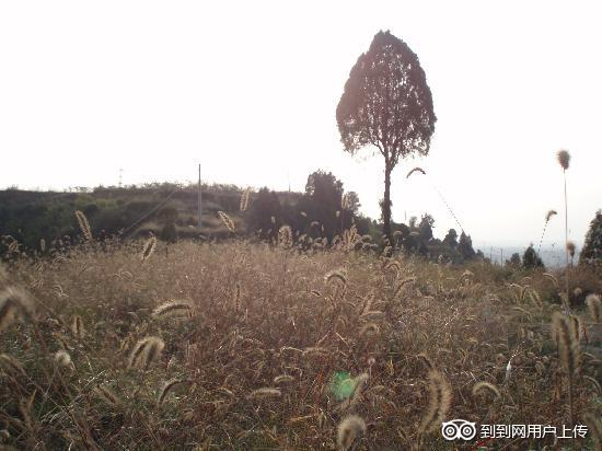 Photos of Sima Qian Tomb and Ancestral Hall