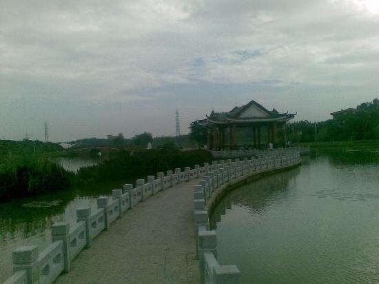 Photos of Songshan Lake Park