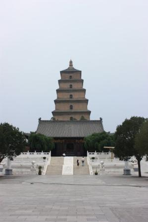 Photos of Xi′an Museum & Small Goose Pagoda (Xiaoyanta)